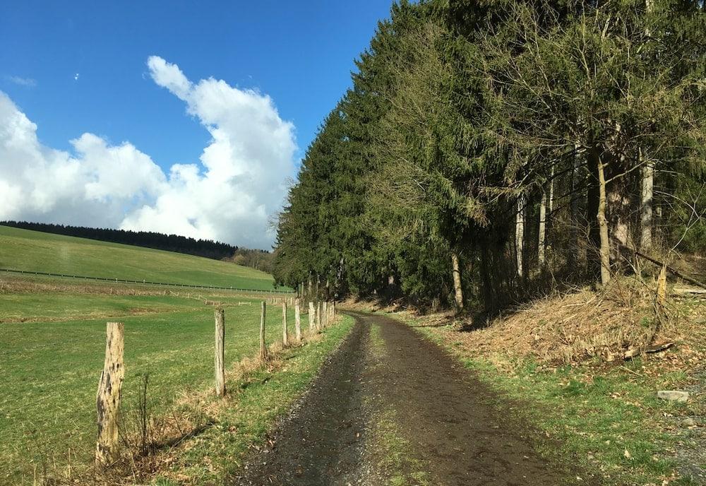 Bild: Vorplanungen für Radweg zwischen Siegen und Freudenberg gestartet